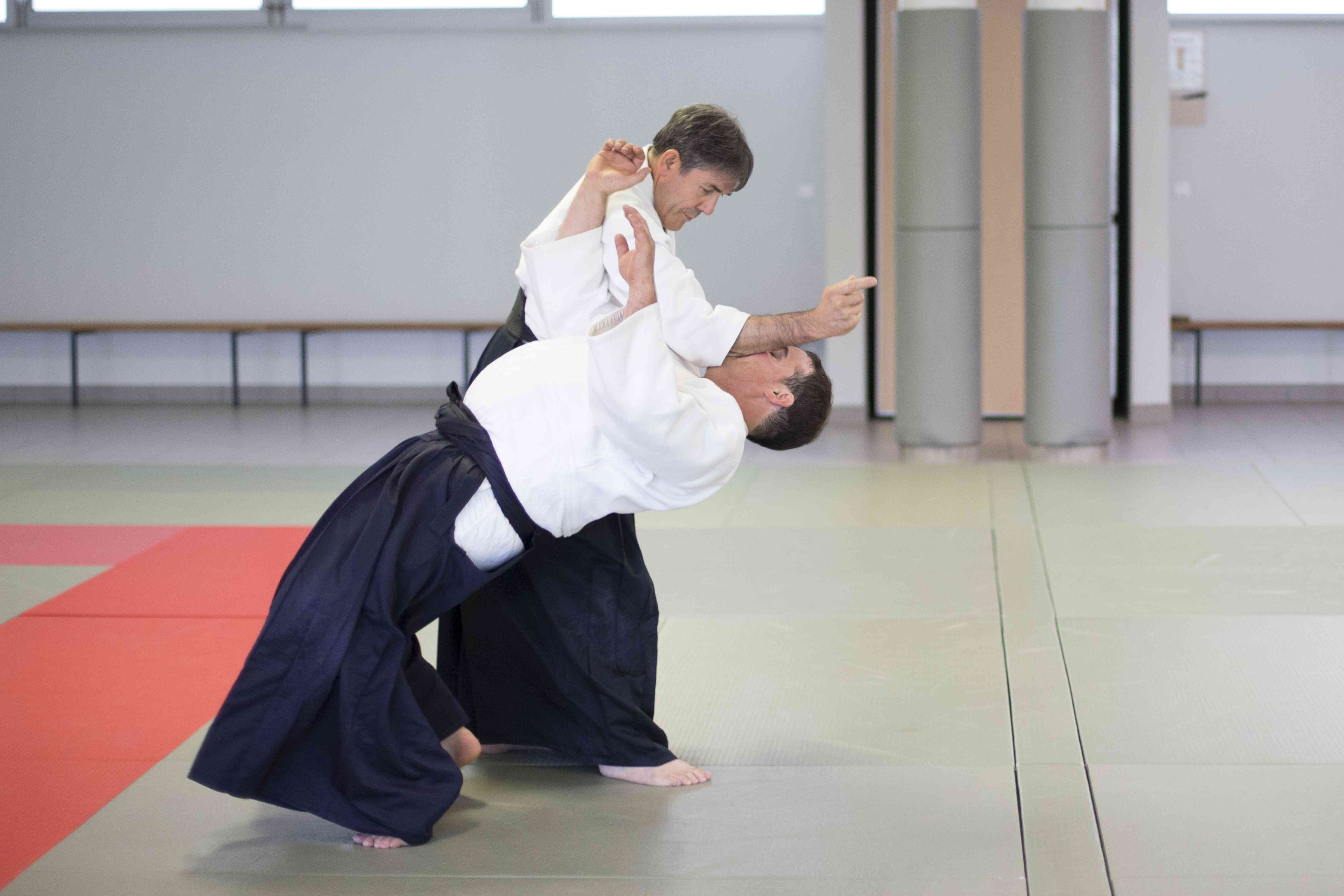 1 Tachiwaza Shomen Uchi Irimi Nage Omote
